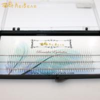 Private label handmade volume eyelash extension clusters from factory in china