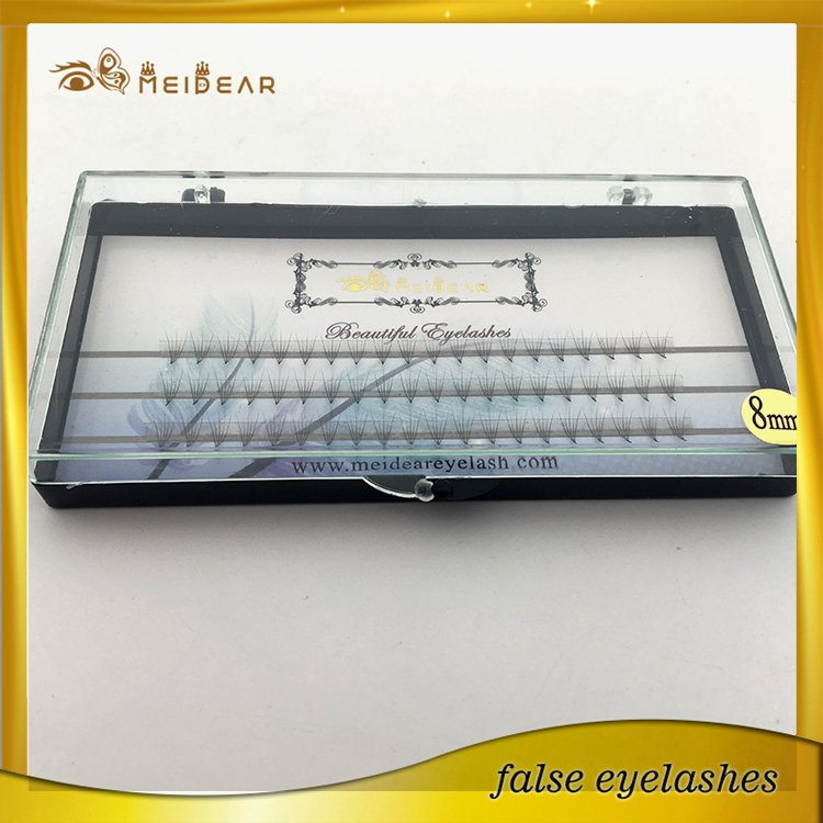 Factory supply own brand 2D 6D  pre-fanned volume eye lashes extension